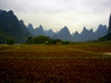 Lace - Guangxi (广西) - Xingping - Lijiang River (漓江)